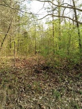 Jackson TN Residential Lots & Land For Sale: $9,900