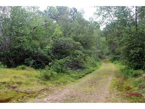 Lots and Land For Sale: 64B Promise Lane
