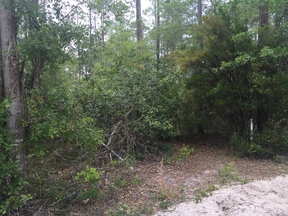 Residential Lots & Land For Sale: LT 93 St Marys River Bluff