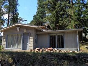 Evergreen CO Single Family Home For Rent: $1,200 Twelve Hundred