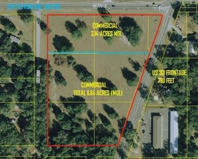 Commercial For Sale: CR 470 (W) & US 301