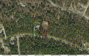 Residential Lots & Land Sold: CR 243C