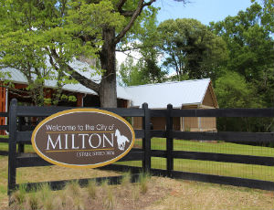 Homes for Sale in Milton, GA