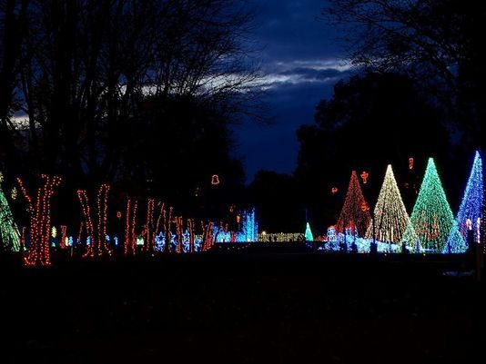 Dancing Lights of Christmas | Darrell