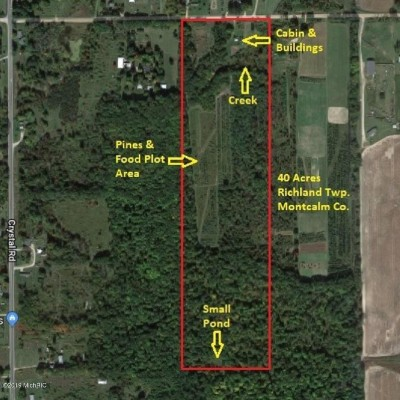 Homes for Sale in Montcalm County, MI