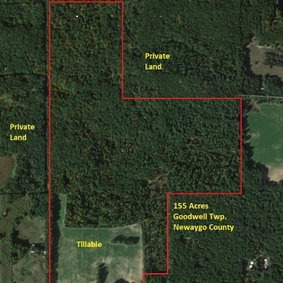 Homes for Sale in Newaygo County, MI