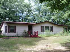 Homes for Sale in Greenbush, MI