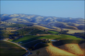 Paso Robles CA Residential Lots & Land Sold: $3,175,000