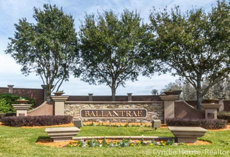 Outstanding Ballantrae Homes For Sale In Land O Lakes Fl Download Free Architecture Designs Scobabritishbridgeorg