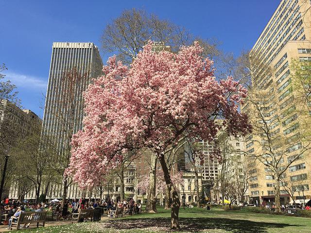 Rittenhouse Square Philadelphia PA 19103