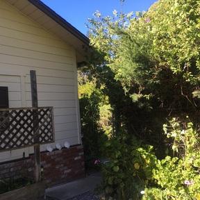 Rental For Rent: Nolan Road #A
