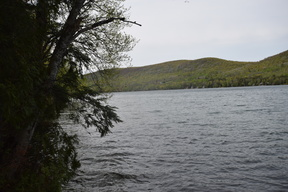 Island Falls ME Residential Lots & Land For Sale: $79,000