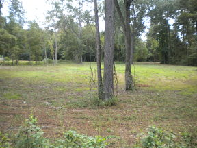 Lots and Land For Sale: 0 Rec Site 4 Road