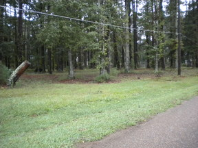Manfield LA Lots and Land For Sale: $26,000