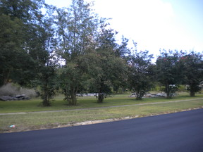 Mansfield LA Lots and Land For Sale: $90,000