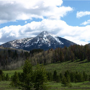 Homes for Sale in Clark, CO