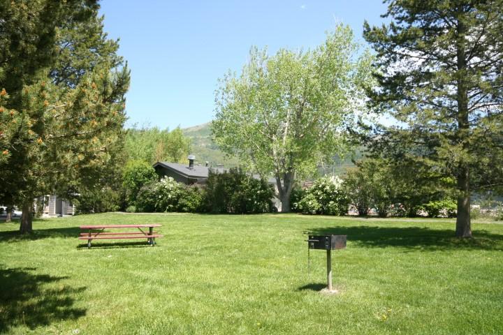 Photo of garden area at Walton Village