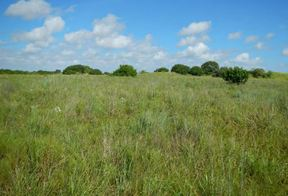 Corpus Christi TX Lots and Land For Sale: $1,500,000