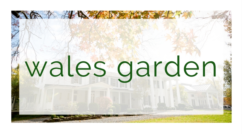 Wales Garden, Wales Garden homes for sale, homes for sale in Columbia SC