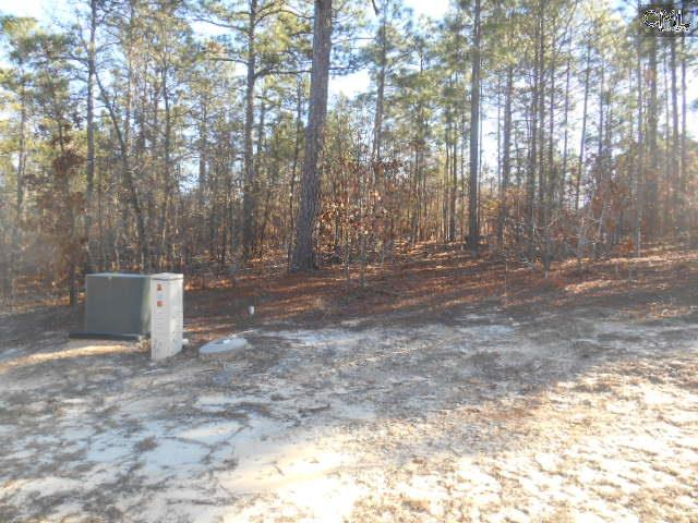 Lot for Sale at 16 Schooner Court in Gated The Peninsula at Lake Carolina https://www.homes-columbia.com/16-schooner-court