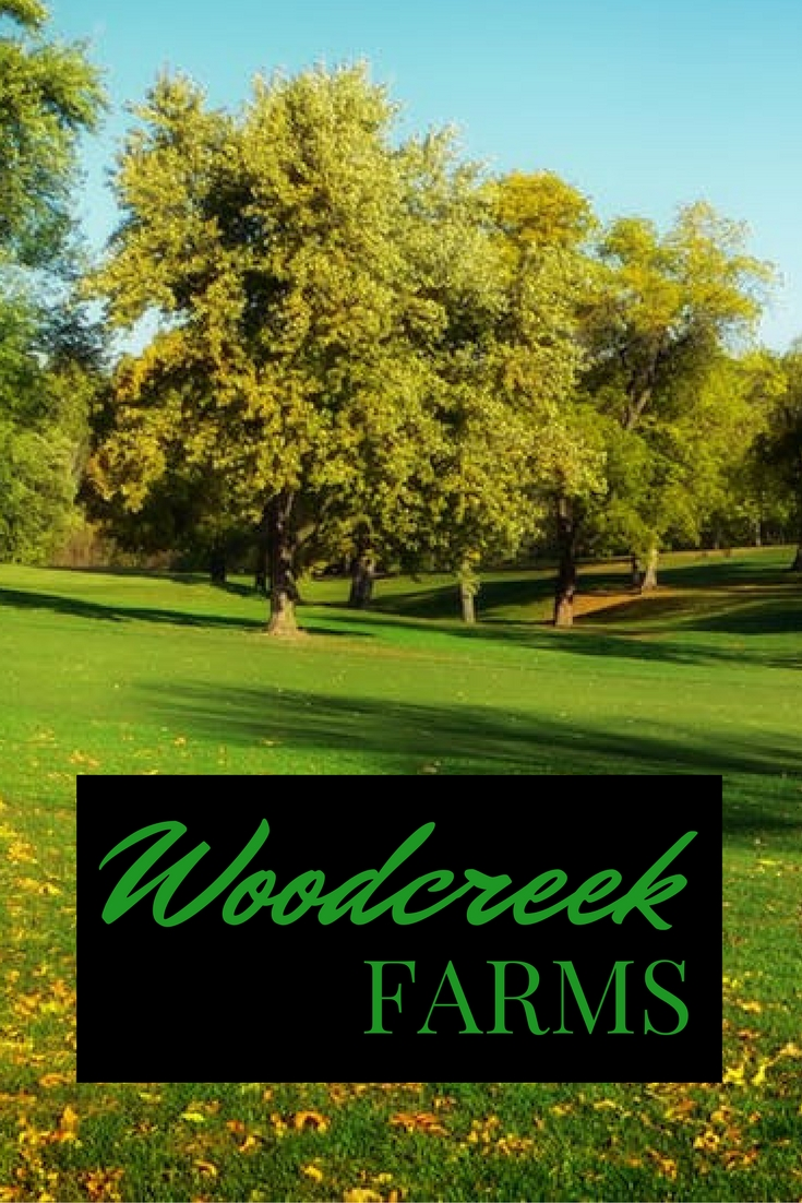 Woodcreek Farms, homes for sale, homes for sale in columbia sc, homes for sale in elgin sc