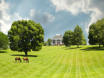 Toledo Bend Lake Farm, Ranch and Acreage