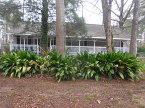 Hemphill Single Family Home For Sale: 169 Toledo Village Drive