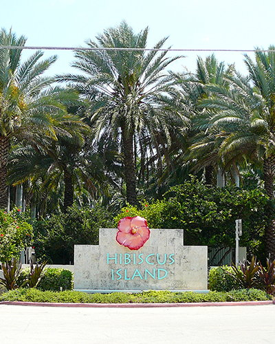Homes for Sale in Hibiscus Island, FL