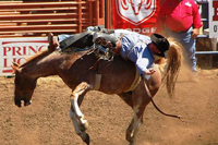 Elks Rodeo in Santa Maria