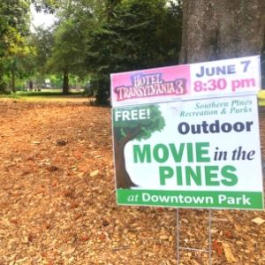 Picture of sign for Movies in the Pines