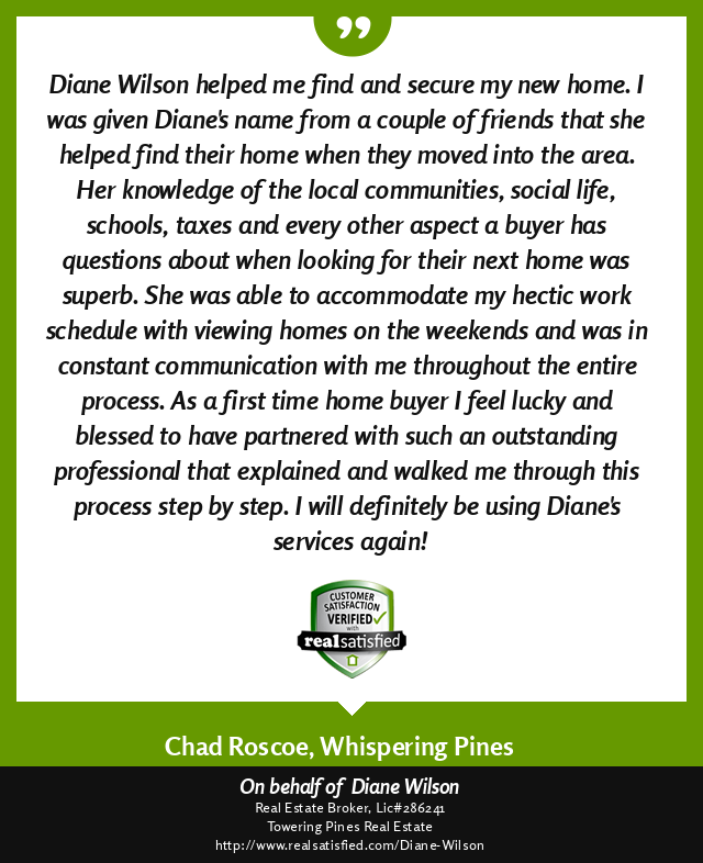 A picture of Diane Wilson's RealSatisfied Review - text of review in blg