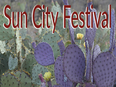 Homes for Sale in Sun City Festival, Buckeye, AZ, call Friedman Realty Associates at 623-476-2491