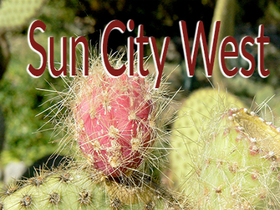 Homes for Sale in Sun City West, AZ, call Friedman Realty Associates at 623-476-2491