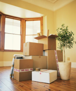 Friedman Realty Associates, moving day, packing boxes