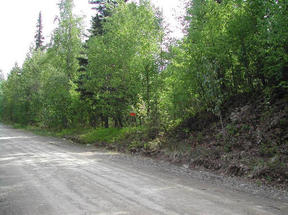 Lots And Land Sold: 33048 S. Mt Brooks Drive