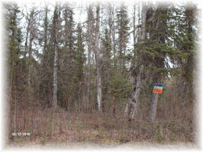 Lots And Land Sold: 35757 S Montana Creek Rd.
