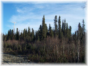 Lots And Land Sold: 20102 E Montana Creek Rd.