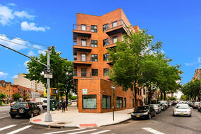 Rental For Rent:  1395 Nelson Ave #5