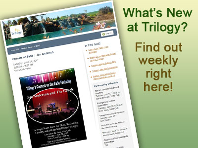 "Read the ""What's New at Trilogy"" Weekly Newsletter!"