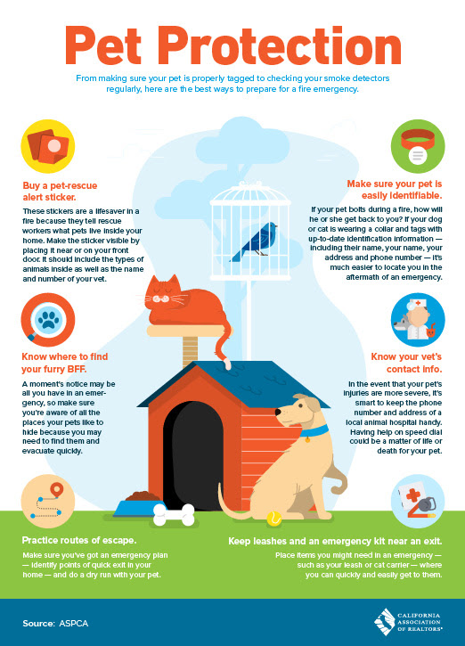 Help Protect Your Pet during Emergencies!