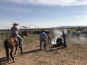 Mountainair NM Farm & Ranch For Sale: $1,975,000