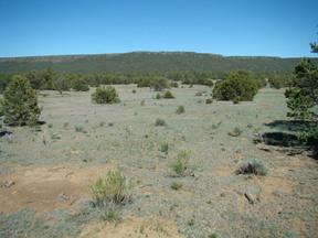 Farm & Ranch Sold: Rim Rock Ranch