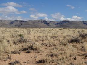 Del City TX Farm & Ranch For Sale: $1,750,000