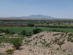 La Joya NM Farm & Ranch For Sale: $1,600,000