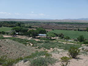 Chaves County Farm & Ranch For Sale: La Joya Farm