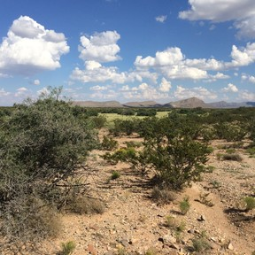 Lincoln County Farm & Ranch For Sale: Cuchillo Mesa Ranch