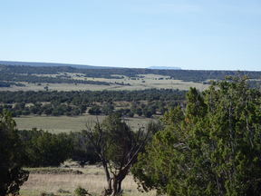 Farm & Ranch For Sale: Valley View Ranch