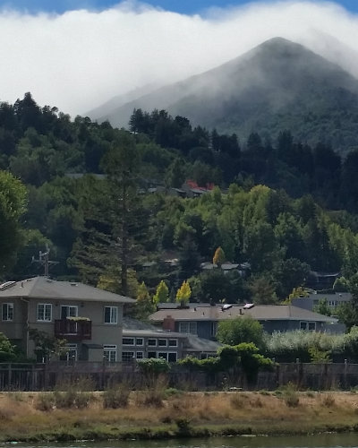 Homes for Sale in Larkspur, CA