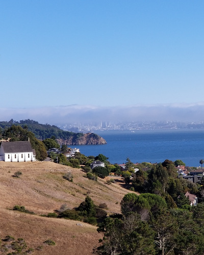 Homes for Sale in Tiburon, CA