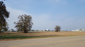 Lots And Land Sold: Hwy 65/Ave 184